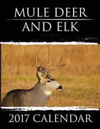 Mule Deer & Elk