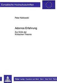 Adornos Erfahrung: Zur Kritik Der Kritischen Theorie