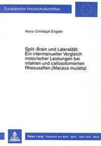 Split-Brain Und Lateralitaet: Ein Intermanueller Vergleich Motorischer Leistungen Bei Intakten Und Callosotomierten Rhesusaffen (Macaca Mulatta)