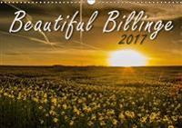 Beautiful Billinge 2017 2017
