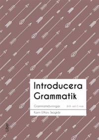 Introducera Grammatik Sfi