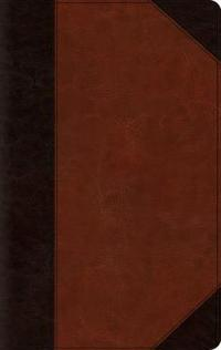 ESV Large Print Thinline Bible (Trutone, Brown/Cordovan, Portfolio Design)