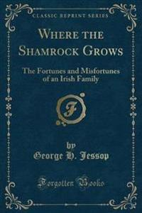 Where the Shamrock Grows