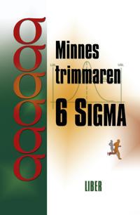 Minnestrimmaren 6 Sigma