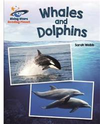 Reading Planet - Whales and Dolphins - White: Galaxy