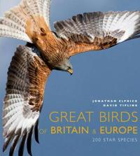 Great Birds of Europe