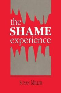 The Shame Experience