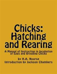 Chicks: Hatching and Rearing: A Manual of Instruction in Incubation of Eggs and Brooding Chicks