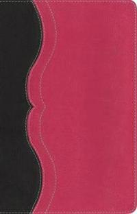 NIV, Quest Study Bible, Personal Size, Imitation Leather, Gray/Pink, Indexed: The Question and Answer Bible