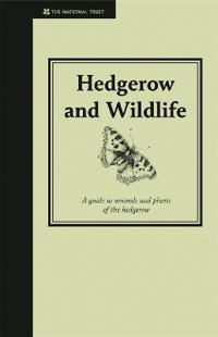 Hedgerow & Wildlife