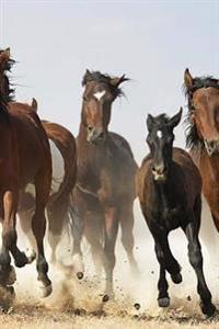 Journal: Mustang Herd of Horses