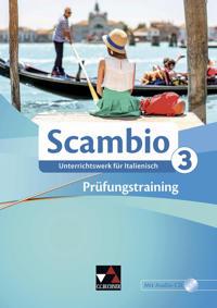 Scambio B 3 Prüfungstraining