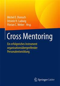 Cross Mentoring: Ein Erfolgreiches Instrument Organisationsubergreifender Personalentwicklung