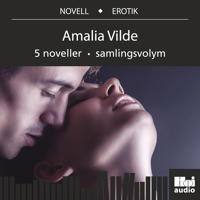 Amalia Vilde 5 noveller samlingsvolym