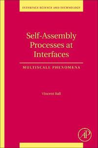 Self-Assembly Processes at Interfaces
