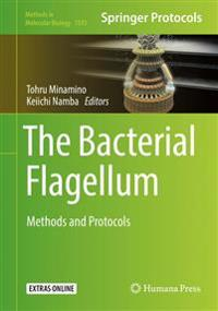 The Bacterial Flagellum