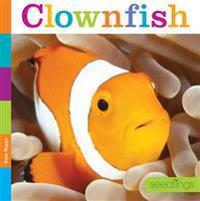 Seedlings: Clownfish