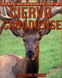 Ciervo Canadiense: Libro de Imagenes Asombrosas y Datos Curiosos Sobre Los Ciervo Canadiense Para Ninos