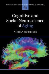 Cambridge Fundamentals of Neuroscience in Psychology
