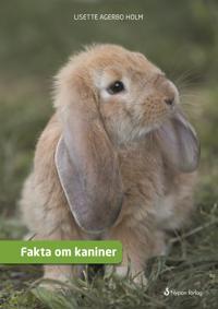 Fakta om Kaniner