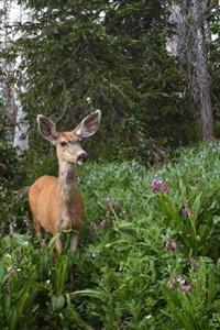 Mule Deer Having a Snack in a Summer Flower Garden Journal: 150 Page Lined Notebook/Diary