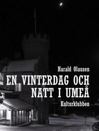 En vinterdag och natt i Umeå