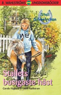 Stallets busigaste häst