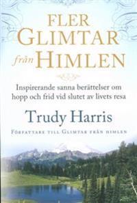 Fler glimtar från himlen : inspirerande sanna berättelser om hopp och frid vid slutet av livets resa