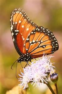 A Lovely Viceroy Butterfly Feeding on a Wildflower Journal: 150 Page Lined Notebook/Diary