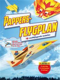 Pappersflygplan : 19 vikbeskrivningar och modellark