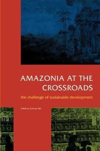 Amazonia at the Crossroads