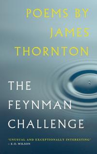 Feynman challenge