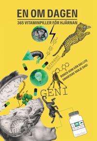 En om dagen : 365 vitaminpiller för hjärnan