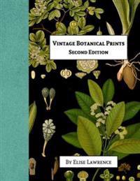 Vintage Botanical Prints: Fourth Edition