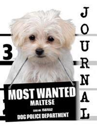 Most Wanted Maltese Journal: Diary Notebook