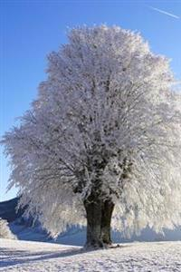 A Beautiful Tree Covered in Frost on a Snowy Winter Day Journal: 150 Page Lined Notebook/Diary
