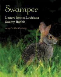 Swamper
