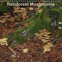 Rainforest Mushrooms 2018