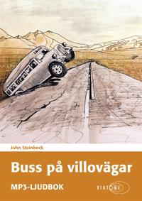 Buss på villovägar