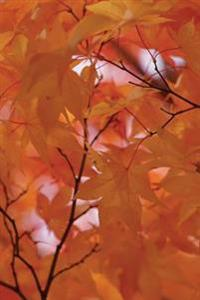 Pallid Leaves Fall Fire Tree Notebook: 150 Page Notebook Journal Diary