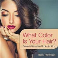What Color Is Your Hair? Sense & Sensation Books for Kids