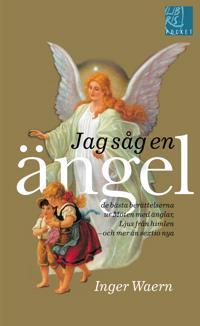 Jag såg en ängel : de bästa berättelserna ur Möten med änglar, Ljus från himlen, och mer än sextio nya