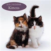 Kittens 2018 Calendar