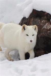 Lovely White Arctic Fox Wild Animal Journal: 150 Page Lined Notebook/Diary