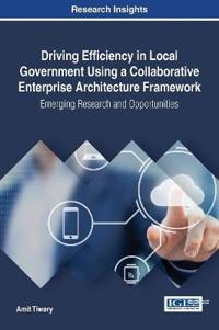 Driving Efficiency in Local Government Using a Collaborative Enterprise Architecture Framework