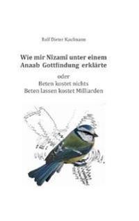 Wie Mir Nizami Unter Einem Anaab Gottfindung Erklarte