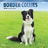 2018 Border Collies Wall Calendar