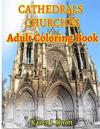 Cathedrals and Churches Coloring Book for Adults Relaxation Meditation Blessing: Sketches Coloring Book