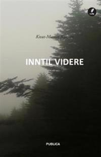 Inntil videre - Knut Martin Karlsen pdf epub
