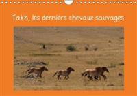 Takh, Les Derniers Chevaux Sauvages 2018